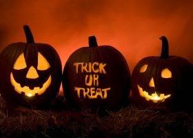 Dove Comprare Zucche per la Festa Halloween