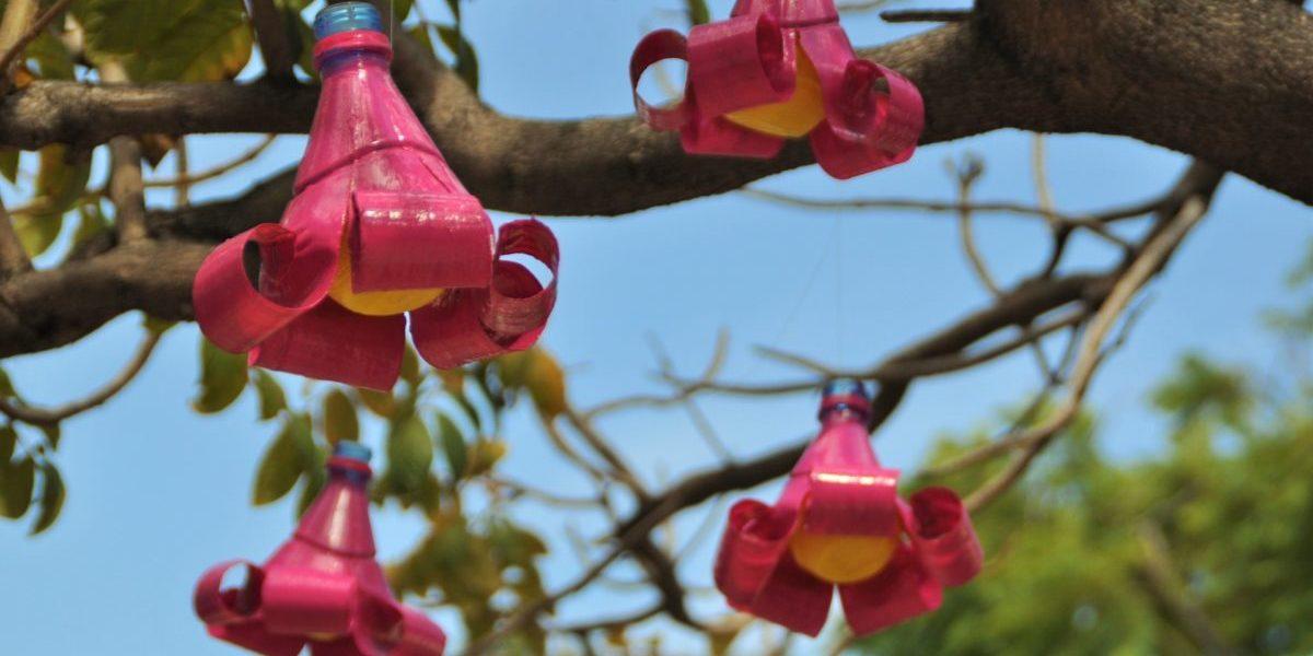 Come fare riciclare plastica creando oggetti