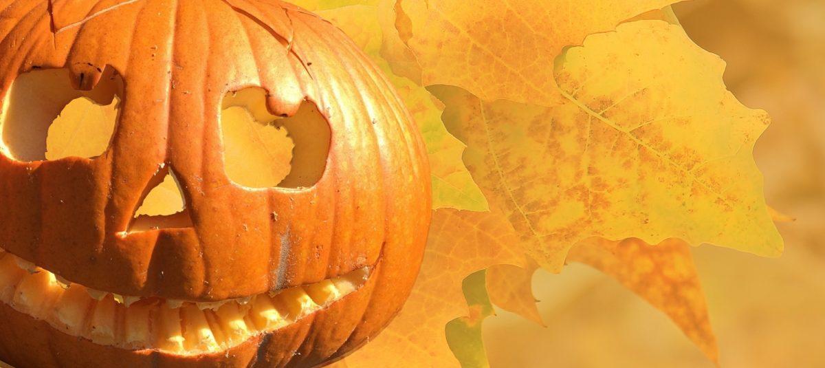 Come fare le zucche di Halloween? Idee per festeggiare alla grande