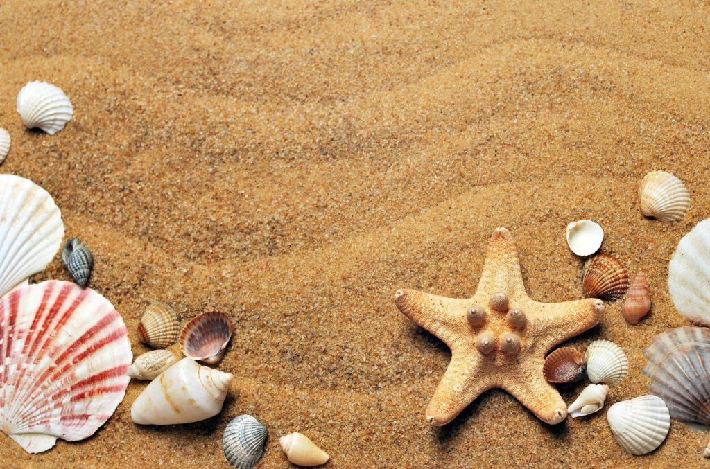Calzedonia beachwear 2020